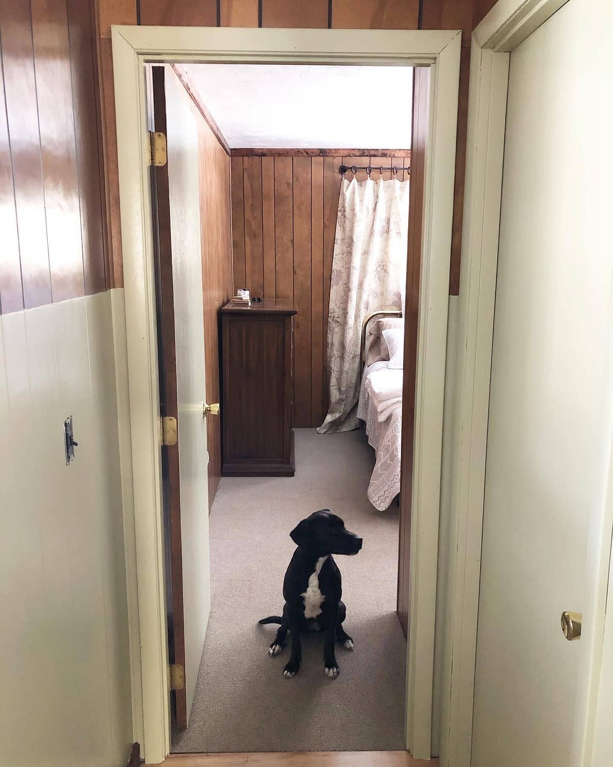 After: The DIY Hallway Wainscoting Project